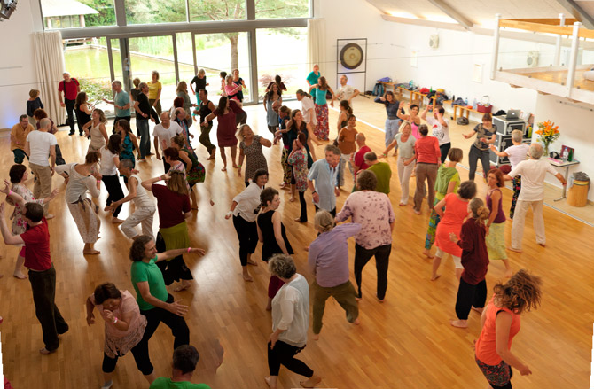 biodanza-summer-celebration-2016-from-top
